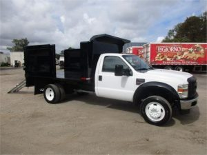2009 FORD F450 XL SD 6117499295